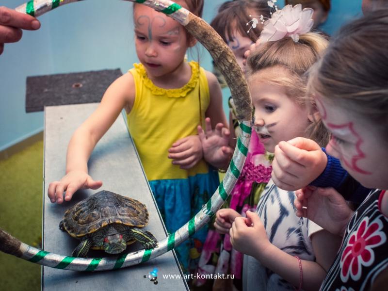 Проведение дня рождения для детей дома сценарий